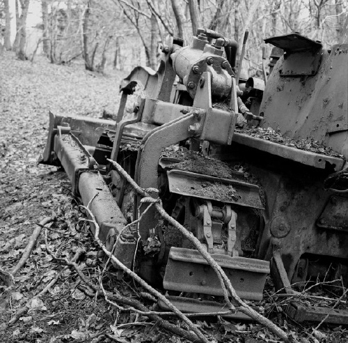 Another crawler, this time in a forest.